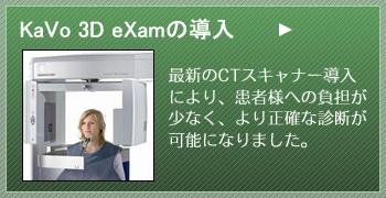 3DeXamの導入